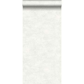 Tapete Betonoptik Hellgrau und Weiß von ESTA home