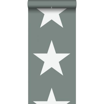 Tapete Sterne Graugrün von ESTA home