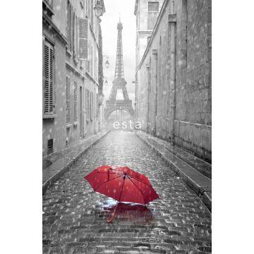 Fototapete Paris Ansicht Grau und Rot von ESTA home