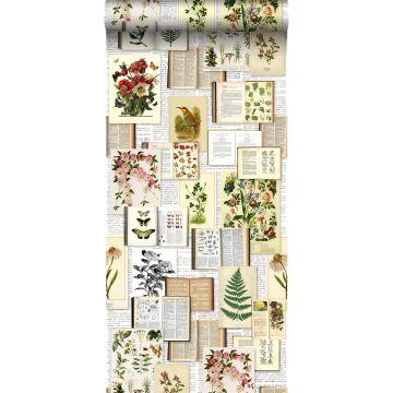 XXLVliestapete Seiten aus botanischen Büchern Crème-Beige, Grün, Braun und Ockergelb von ESTA home