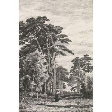Fototapete bewaldete Landschaft Schwarz-Weiß von ESTA home