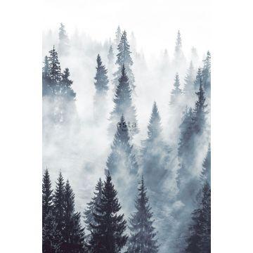 Fototapete nebliger Wald Grün von ESTA home