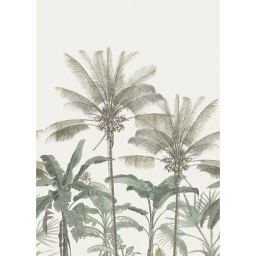 Fototapete Palmen Hellbeige und Graugrün von ESTA home