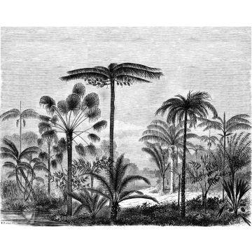 Fototapete tropische Landschaft mit Palmen Schwarz-Weiß von ESTA home