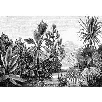 Fototapete tropische Landschaft Schwarz-Weiß von ESTA home