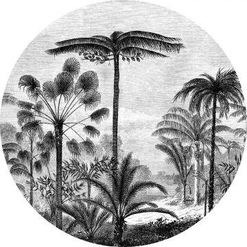 selbsklebende runde Tapete tropische Landschaft mit Palmen Schwarz-Weiß von ESTA home