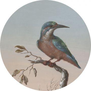 selbsklebende runde Tapete Eisvogel auf Zweig Abendrot von ESTA home
