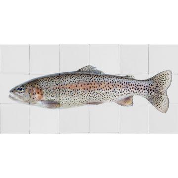 selbsklebende Wandtattoo Fisch Grau und Lachsrosa von ESTA home