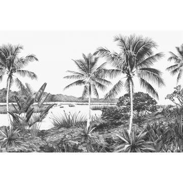 Fototapete Landschaft mit Palmen Schwarz-Weiß von Origin
