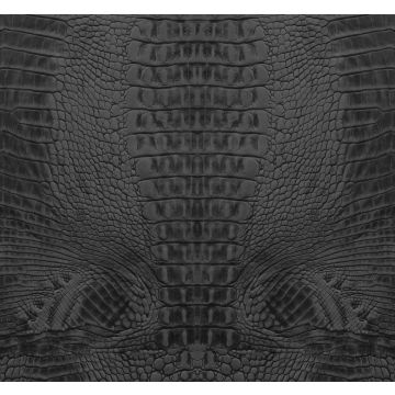 Fototapete Krokodil-Optik Schwarz von Origin